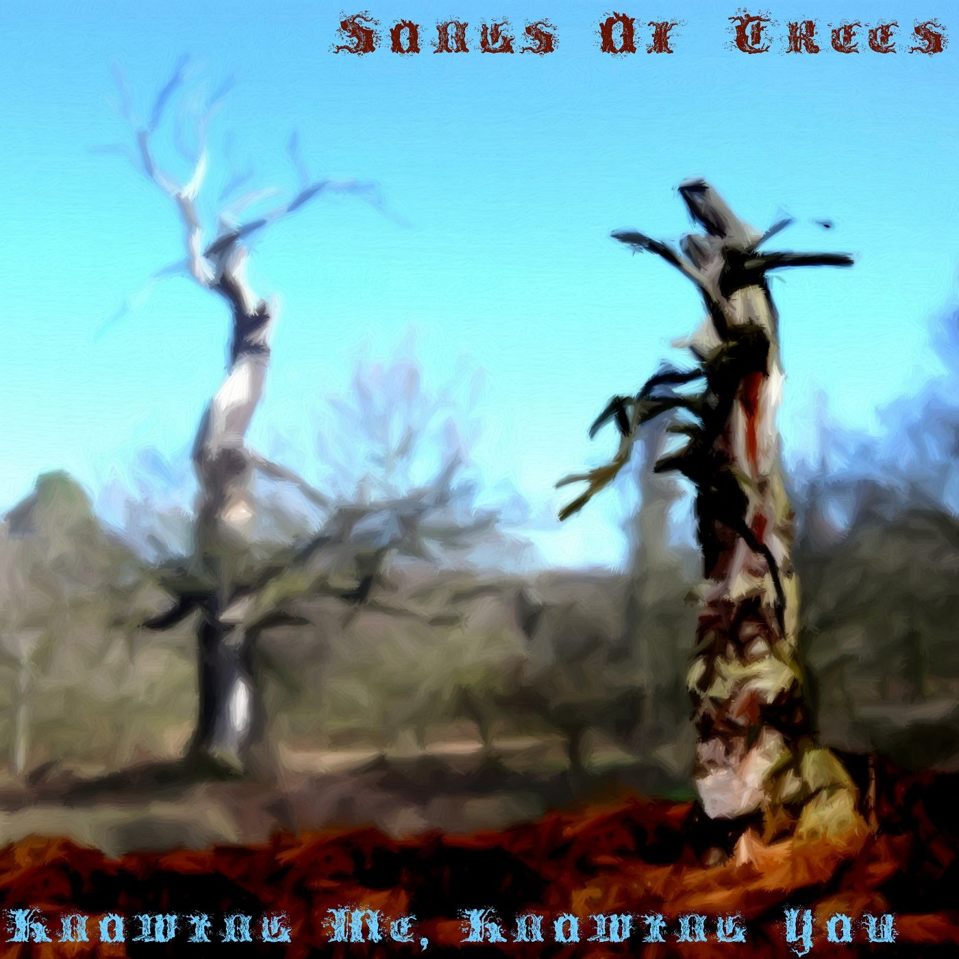 Knowing Me, Knowing You, cover ABBA par Songs of Trees
