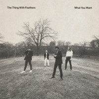 The Thing With Feathers - What You Want