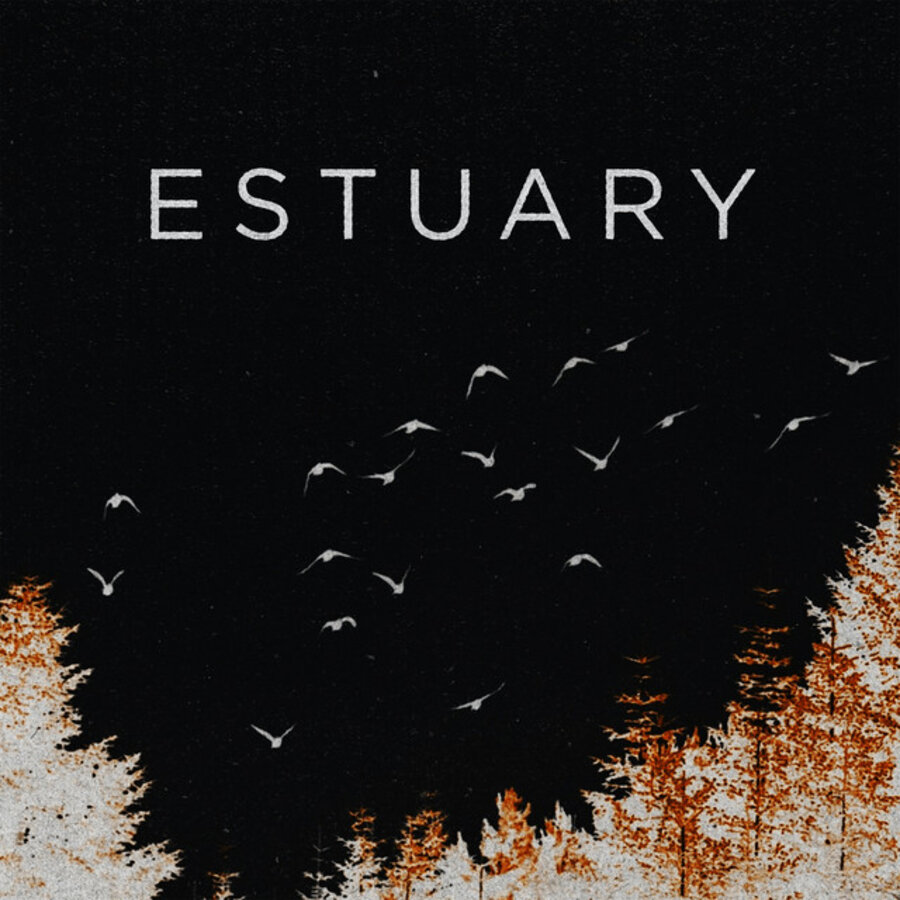 Silver Wolf Band – Estuary