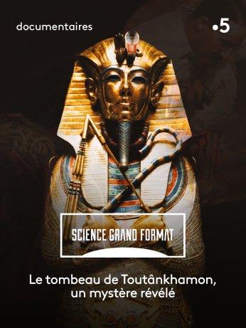 Pourquoi les Sphinx ont le nez cassé?