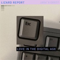 Lizard Report-Phases