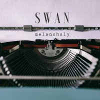 Swan-Just Friends